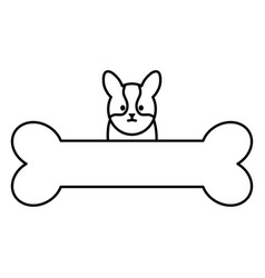 little dog adorable with bone vector image