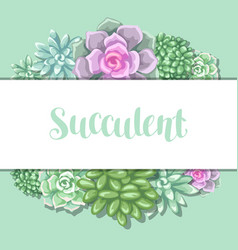 Card with succulents echeveria jade plant and vector