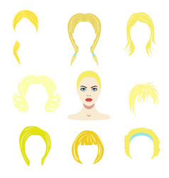 hair styles collection vector image