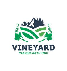 red wine plantation logo design vector image