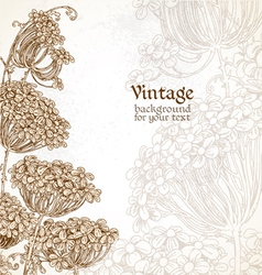 Wild flowers - umbrellas vintage background vector image
