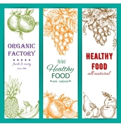 Healthy organic fruits sketch banners vector image vector image