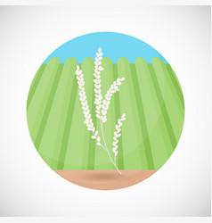 rice plant bag flat icon vector image