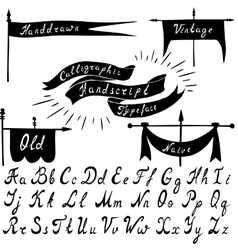 Set of calligraphic handdrawn font and vintage vector image