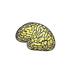 An abstract of a brain concept design vector image