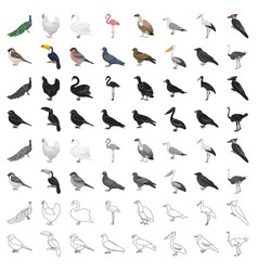 bird set icons in cartoon style big collection vector image