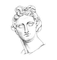 Bust apollo ancient greek god vector