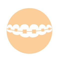 Denture with orthodontics icon vector
