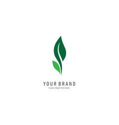 leaf logo symbol vector image