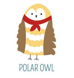 Polar owl in scarf childish book cartoon character vector