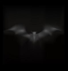smoke is bat on dark background vector image