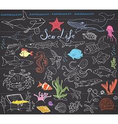 Big sea life animals hand drawn sketch set doodles vector image