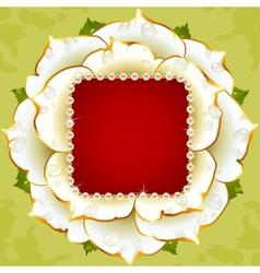 white rose circle frame vector image
