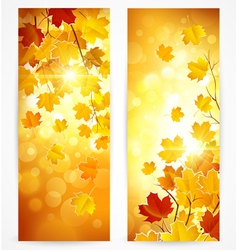 Collection of autumn banners vector image