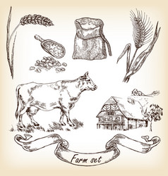 Cow farm house wheat vector
