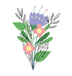 Flowers bouquet foliage decoration herbs botany vector