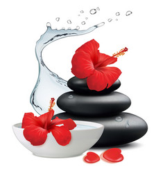 Hibiscus flowers and zen stone bowl with water on vector