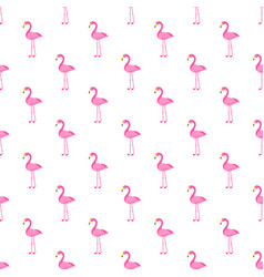 Pattern with pink flamingo bird on white vector