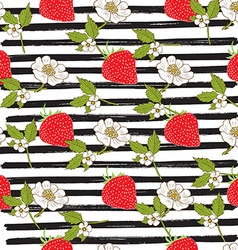 Strawberry hand drawn sketch striped Seamless vector