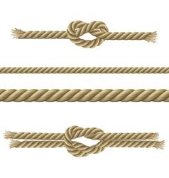 Ropes Decorative Set vector image
