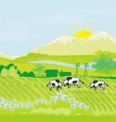 Cows grazing in green meadow vector image