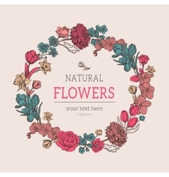 Composition of sketch flowers vector image vector image