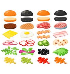 burger ingredients hamburger fast food vector image