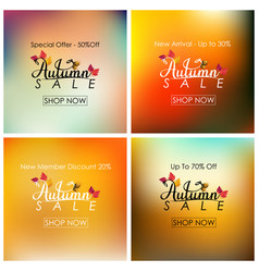 collection of autumn sale banner vector image