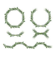 Decorative big element set eucalyptus green vector