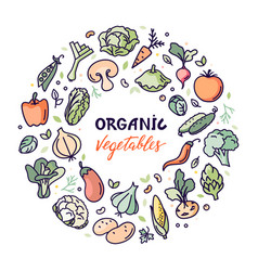 flat organic vegetables with a vector image