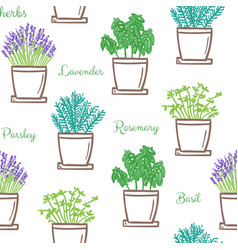 frest garden herbs in pots seamless pattern vector image