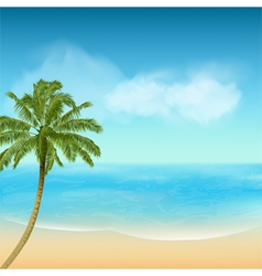 summer sea and palm tree background vector image