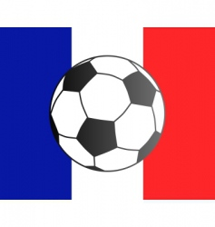 flag of France and soccer ball vector image vector image
