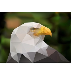 Abstract polygonal triangle bald eagle Geometric vector image