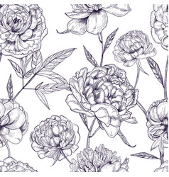 Beautiful peonies seamless pattern hand drawn vector