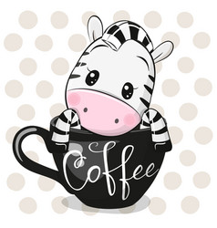 Cartoon zebra is sitting in a cup coffee vector