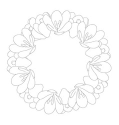 crocus flower outline wreath vector image