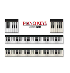 photorealistic piano keyboard icon set vector image