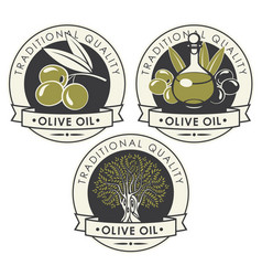 set of stickers or labels for olive oil vector image