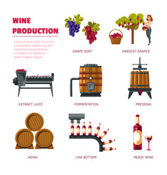 wine production grape harvest extract juice and vector image