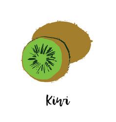 kiwi fruit drawing healthy food vector image