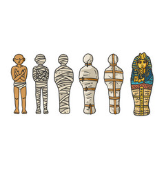 a six step process showing mummy creation vector image
