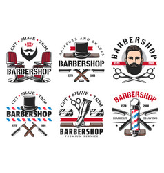 barber shop tools and equipment vector image