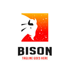 bison box logo design template vector image