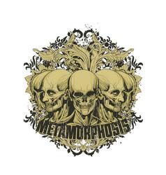metamorphosis vector image