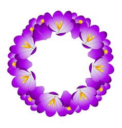 purple crocus flower wreath vector image