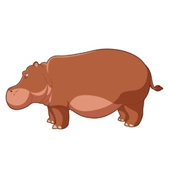 Cartoon brown hippo vector image