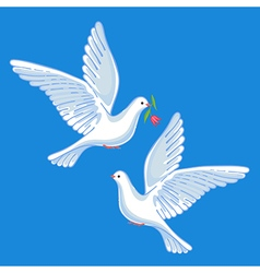 Soaring doves with flower vector