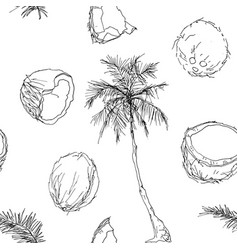 Coconut tree and fruits vector