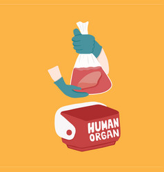 cooler box for human organs transportation vector image